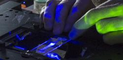 Gloved hands probing a microfluidic device in laser light